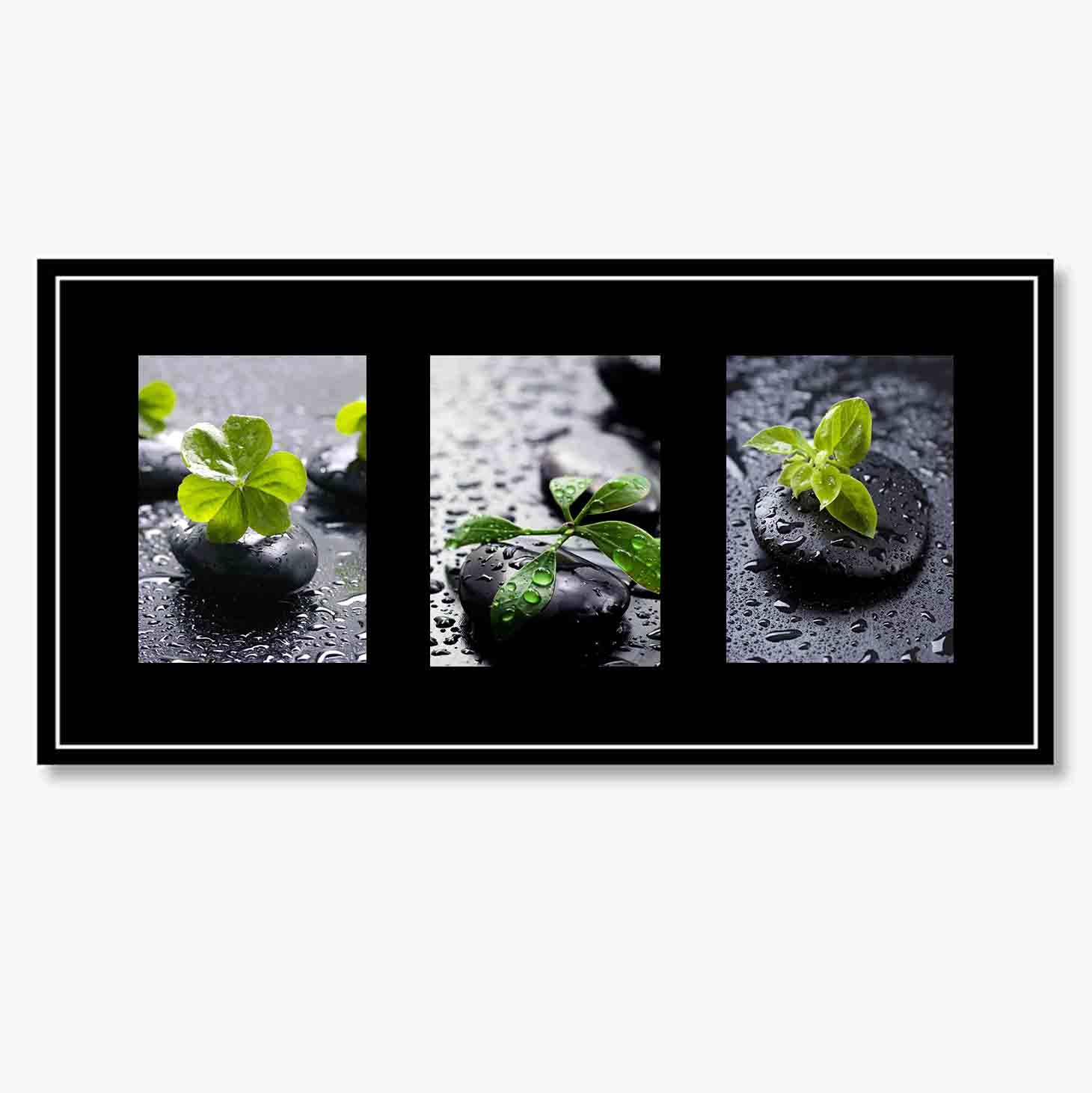 Tranh N – Green leaves on black stone II